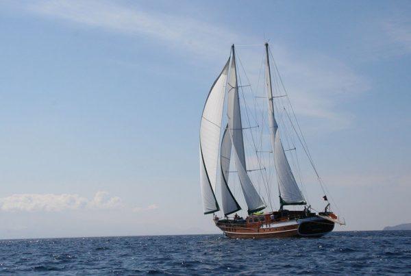Kaptan Yilmaz 3 8